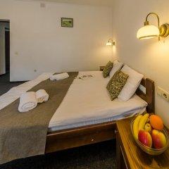 Гостиница ZimaSnow Ski & Spa Club 3* Стандартный номер с различными типами кроватей фото 2