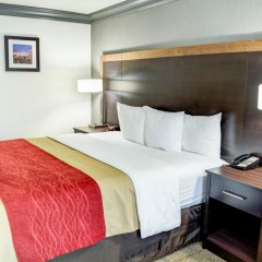 Отель Comfort Inn And Suites Near Universal Studios 2* Стандартный номер фото 3