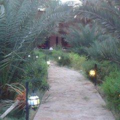 Отель Riad Tagmadart Ferme D'hôte Марокко, Загора - отзывы, цены и фото номеров - забронировать отель Riad Tagmadart Ferme D'hôte онлайн фото 14