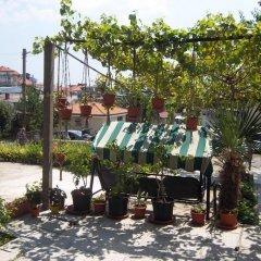 Отель Bachvarovi Болгария, Свети Влас - отзывы, цены и фото номеров - забронировать отель Bachvarovi онлайн фото 3