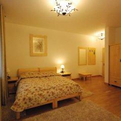 Отель Willa Kominiarski Wierch Польша, Закопане - отзывы, цены и фото номеров - забронировать отель Willa Kominiarski Wierch онлайн комната для гостей
