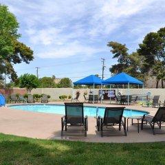 Отель Las Vegas Camping Resort Cabin 2 США, Лас-Вегас - отзывы, цены и фото номеров - забронировать отель Las Vegas Camping Resort Cabin 2 онлайн бассейн фото 3