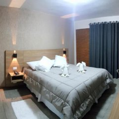 Hotel Garnier 2* Номер Делюкс с различными типами кроватей фото 4