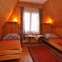Отель Sfinks Польша, Закопане - отзывы, цены и фото номеров - забронировать отель Sfinks онлайн детские мероприятия