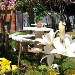 Отель Hostal Las Cumbres Испания, Кониль-де-ла-Фронтера - отзывы, цены и фото номеров - забронировать отель Hostal Las Cumbres онлайн фото 5