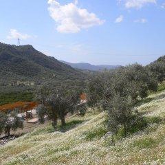 Natureland Efes 3* Стандартный номер с различными типами кроватей фото 38