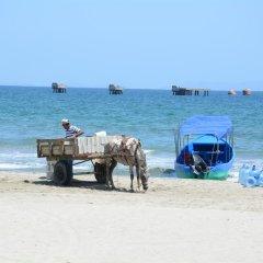 Отель Sherwood Гондурас, Тела - отзывы, цены и фото номеров - забронировать отель Sherwood онлайн пляж фото 2