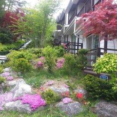Отель Swiss Pension Южная Корея, Пхёнчан - отзывы, цены и фото номеров - забронировать отель Swiss Pension онлайн фото 7