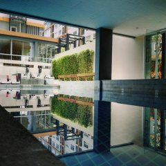 Отель The Grass Serviced Suites by At Mind развлечения