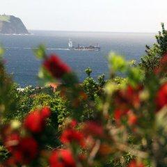 Отель Villa Boa Vista Португалия, Мадалена - отзывы, цены и фото номеров - забронировать отель Villa Boa Vista онлайн пляж