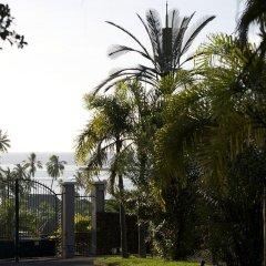 Отель Villa Ava Французская Полинезия, Муреа - отзывы, цены и фото номеров - забронировать отель Villa Ava онлайн