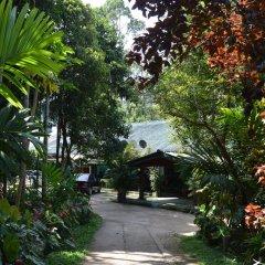 Отель Green Valley Holiday Inn Шри-Ланка, Бандаравела - отзывы, цены и фото номеров - забронировать отель Green Valley Holiday Inn онлайн фото 12