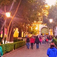 Отель Hostal Abundantia Мехико бассейн
