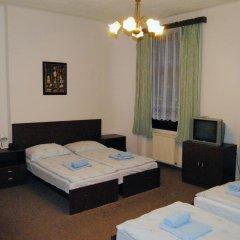 Hotel Olga 2* Стандартный номер с различными типами кроватей фото 4