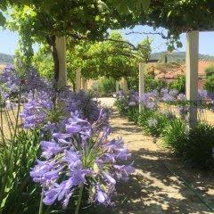 Отель Quinta De Santa Maria D' Arruda Португалия, Турсифал - отзывы, цены и фото номеров - забронировать отель Quinta De Santa Maria D' Arruda онлайн фото 10