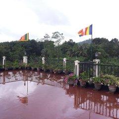 Отель Manikgoda Tea Paradise фото 9