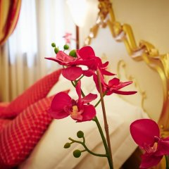 Hotel San Luca Venezia 3* Стандартный номер с различными типами кроватей фото 24