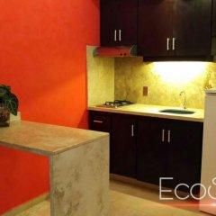 Отель Cancun Ecosuites Мексика, Канкун - отзывы, цены и фото номеров - забронировать отель Cancun Ecosuites онлайн в номере фото 3