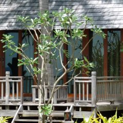 Отель New Ozone Resort And Spa Ланта фото 23