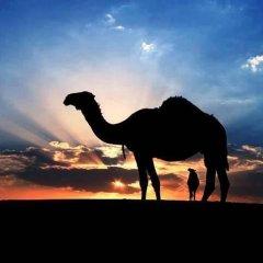 Отель Merzouga Desert Марокко, Мерзуга - отзывы, цены и фото номеров - забронировать отель Merzouga Desert онлайн фитнесс-зал фото 3