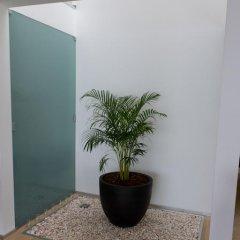 Отель Luxo E Conforto удобства в номере фото 2