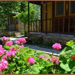 Montenegro Motel Стандартный номер с различными типами кроватей фото 5