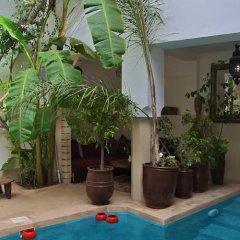 Отель Riad Tawanza Марокко, Марракеш - отзывы, цены и фото номеров - забронировать отель Riad Tawanza онлайн бассейн фото 2