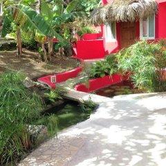 Отель Sunset Hill Lodge Французская Полинезия, Бора-Бора - отзывы, цены и фото номеров - забронировать отель Sunset Hill Lodge онлайн фото 21
