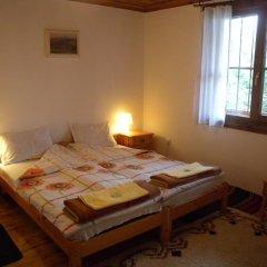 Отель Borimechkovata Kashta 2* Стандартный номер с различными типами кроватей