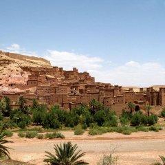 Отель Bivouac Jawhara Марокко, Мерзуга - отзывы, цены и фото номеров - забронировать отель Bivouac Jawhara онлайн