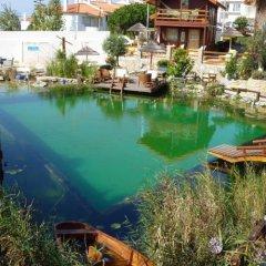 Отель Eco Sound - Ericeira Ecological Resort бассейн
