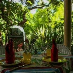 Отель Le Jardin Des Biehn Марокко, Фес - отзывы, цены и фото номеров - забронировать отель Le Jardin Des Biehn онлайн фото 18