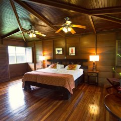 Отель Chachagua Rainforest Ecolodge 3* Стандартный номер с различными типами кроватей фото 16