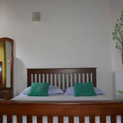 Отель Olive Tree Guest House Стандартный номер с различными типами кроватей фото 3