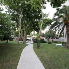 Отель Tara Черногория, Будва - 1 отзыв об отеле, цены и фото номеров - забронировать отель Tara онлайн фото 6