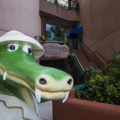 Отель Azul Ixtapa Resort - Все включено с домашними животными