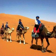 Отель Merzouga Riad and Bivouac Excursion Марокко, Мерзуга - отзывы, цены и фото номеров - забронировать отель Merzouga Riad and Bivouac Excursion онлайн приотельная территория фото 2