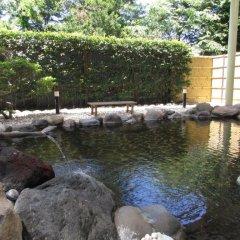 Nogi Onsen Hotel Насусиобара бассейн