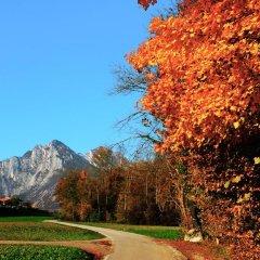 Отель B&b Col del Vin Италия, Беллуно - отзывы, цены и фото номеров - забронировать отель B&b Col del Vin онлайн фото 3