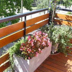 Отель Cara Mia Tigre Тигре балкон