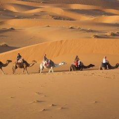Отель Riad Tadarte Марокко, Мерзуга - отзывы, цены и фото номеров - забронировать отель Riad Tadarte онлайн пляж