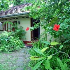 Kahuna Hotel 3* Апартаменты с различными типами кроватей фото 13