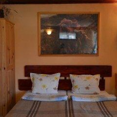 Отель Zlatniyat Telets Guest Rooms 2* Стандартный номер с различными типами кроватей фото 4