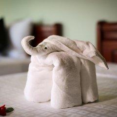 Отель Rice Village Homestay 2* Стандартный номер с различными типами кроватей фото 4