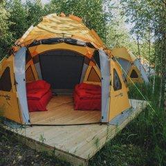 Гостиница Farm Camping Nikola Lenivets в Калуге отзывы, цены и фото номеров - забронировать гостиницу Farm Camping Nikola Lenivets онлайн Калуга приотельная территория