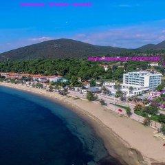 Отель Apocalypsis пляж