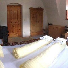Отель AgroPobitzer Стандартный номер фото 5
