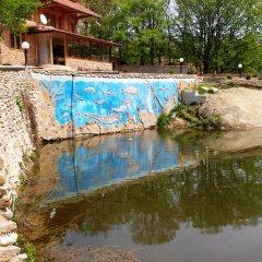 Отель Eco House Gorski Kut Болгария, Аврен - отзывы, цены и фото номеров - забронировать отель Eco House Gorski Kut онлайн бассейн