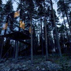 Tree Hotel фото 8