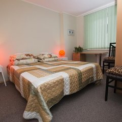 Отель Guest House Drusva Литва, Друскининкай - 1 отзыв об отеле, цены и фото номеров - забронировать отель Guest House Drusva онлайн комната для гостей фото 2